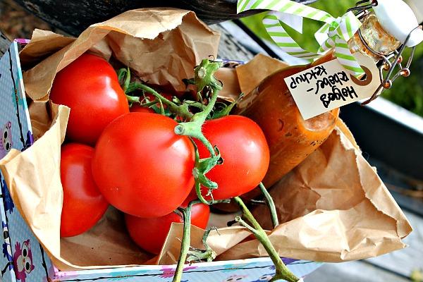 tomat ketchup med rabarber
