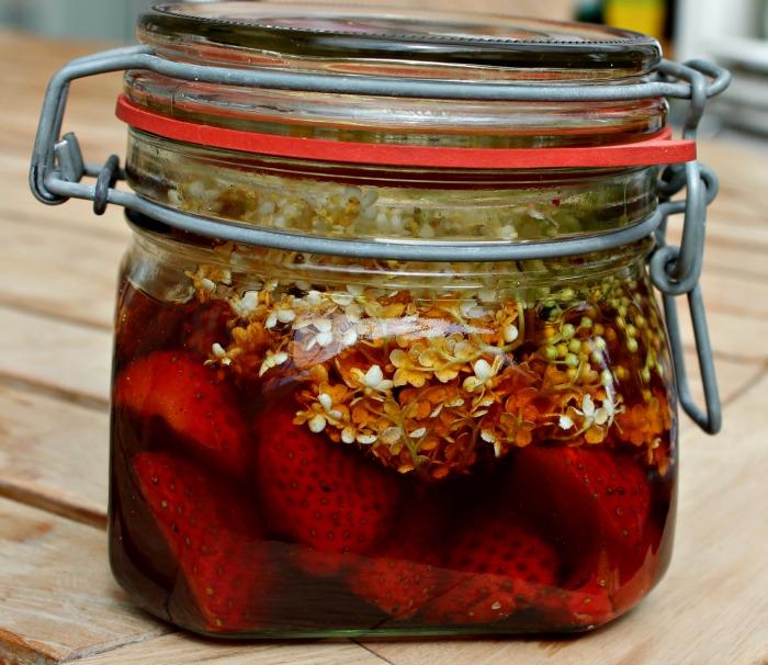 hyldeblomsteddike med jordbær